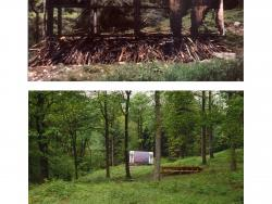 Colin Lowe & Roddy Thomson's Grizedale Forest billboard image, before and after it was burnt (2002)