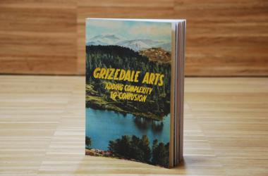 Grizedale Arts - Adding Complexity to Confusion